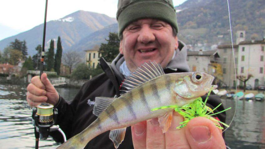 pesca di persico